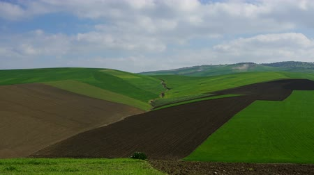 nuvem : Beatiful landscape with agriculture in Morocco, Africa, zoom in timelapse
