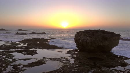 sea bird : Waves and rocks in the sea against the backdrop of the setting sun, 4k Stock Footage