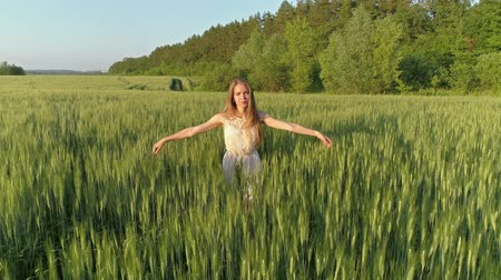fly away : Beautiful girl walking in a wheat field at sunset, aerial view 4k