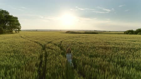 weglopen : Beautiful girl walking in a wheat field at sunset, aerial view 4k
