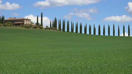 toskánský : Tuscany landscape panorama with farmhouse and cypresses at sunny day. Province of Siena, Italy, 4k