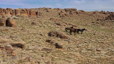 stacked rock : Aerial view on horses and rocks in Mongolia
