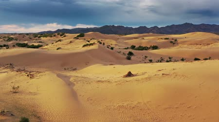 desolado : Aerial view of sand dunes Bayan Gobi in Mongolia Stock Footage