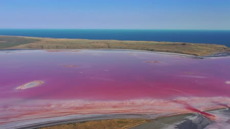 salt lagoon : Aerial view of pink lake near Black Sea in Crimea Stock Footage
