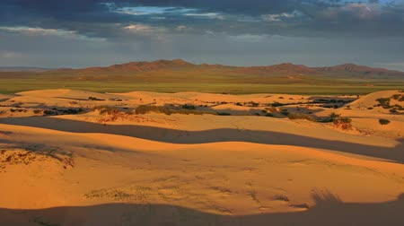 gobi : Aerial view of sand dunes at sunrise in Mongolia Stock Footage