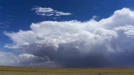 кучево дождевые облака : Storm clouds over steppe dramatic sky background
