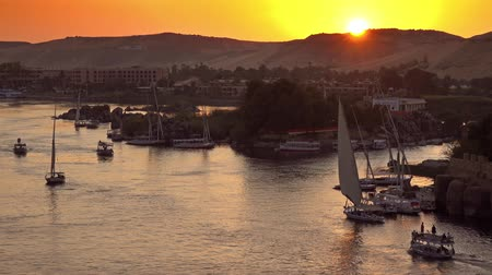 aswan : felucca boats on Nile river in Aswan at sunset Stock Footage