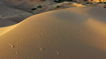サハラ : Aerial top view on sand dunes in desert at sunrise