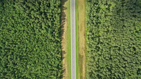 příjezdová cesta : Aerial top view on country road in forest