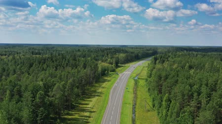 bird's eye view : Aerial top view on country road in forest