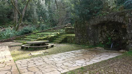 oak : stone structures and fountain in forest of Bussaco