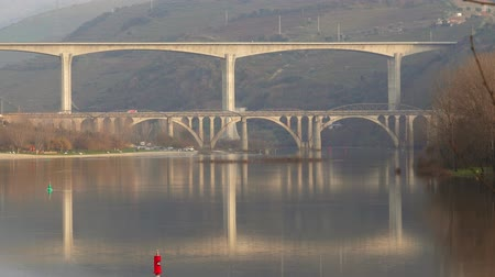 winogrona : Bridges crossing Douro river in Portugal
