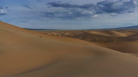 サハラ : Beatiful landscape in desert at sunset timelapse