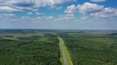 speedway : Aerial top view of country road in forest