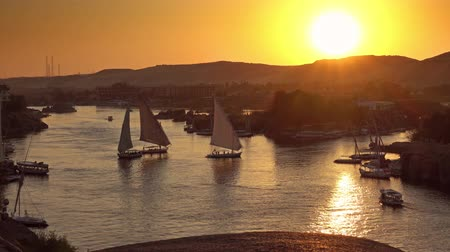 nílus : felucca boats on Nile river in Aswan at sunset Stock mozgókép