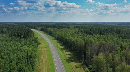 pista de corrida : Aerial top view of country road in forest