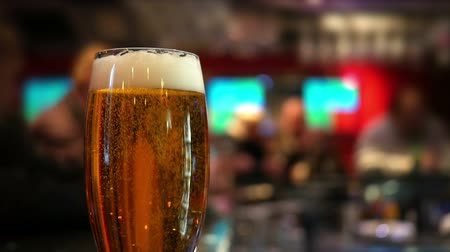 pint glass : Pint glass of lager on pub table Stock Footage