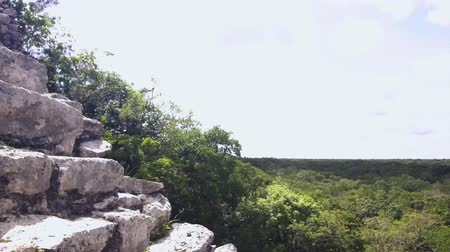 руины : Coba Mayan Ruins, climb of pyramid Nohoch Mul, video 4K Стоковые видеозаписи