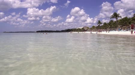 Канкун : Akumal beach paradise in caribbean coast of mexico quintana roo, video 4k