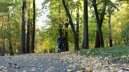 passerby : A man walks through the autumn leaves.