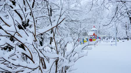 Russian winter. The winter Playground of snowy trees Dostupné videozáznamy