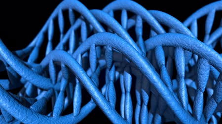 mikroskopický : DNA code. Abstract 3d polygonal wireframe DNA molecule helix spiral. Loop animation.