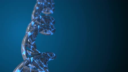 helezon : DNA code. Abstract 3d polygonal wireframe DNA molecule helix spiral. Loop animation.