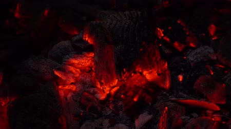 arson : Background of burning coals in the dark. 4k
