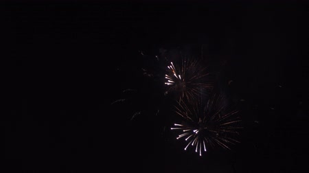 consecutivo : Festive fireworks in the black sky. 4k Vídeos