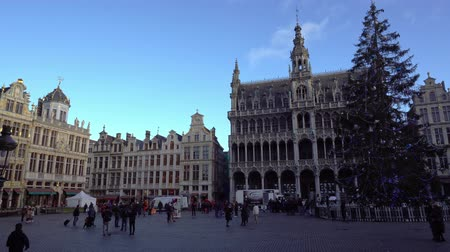belga : Belgium December 2018. Time lapse Christmas square Grand-Place in Brussels Vídeos