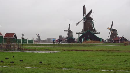 bundestag : Amsterdam. Zaanse Schans Village December 2018. Winter rainy weather in the tourist village Zaanse Schans.