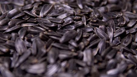 wooden type : Sunflower seeds fried with salt movement in the frame Stock Footage