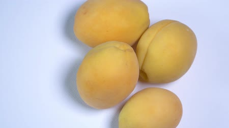 meruňka : close up. rotation of yellow apricots on white background Dostupné videozáznamy