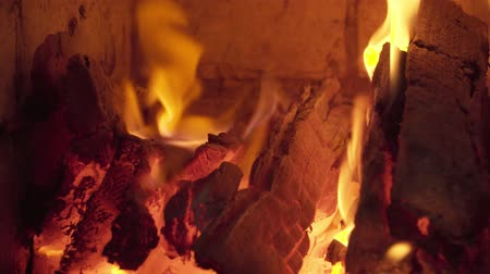 fireplace : burning wood in the fireplace in the cold winter