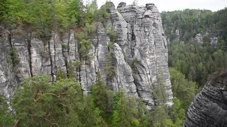 bástya : Video cliff of canyon in Saxon Switzerland Stock mozgókép