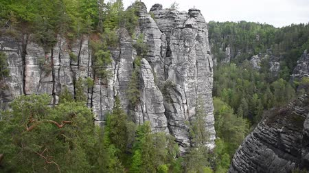 mediaeval : Video cliff of canyon in Saxon Switzerland Stock Footage