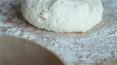 kneads : Woman Kneads Homemade Daugh