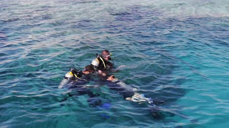 lanoví : Sharm el-Sheikh, Egypt - December 6, 2016: divers in aqualung prepare to dive on the seabed.