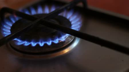 cooktop : Burning blue flames of a gas stove Stock Footage