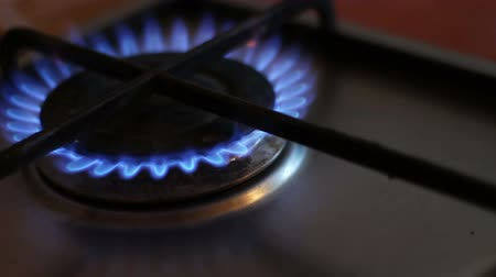 fogão : Burning blue flames of a gas stove Stock Footage