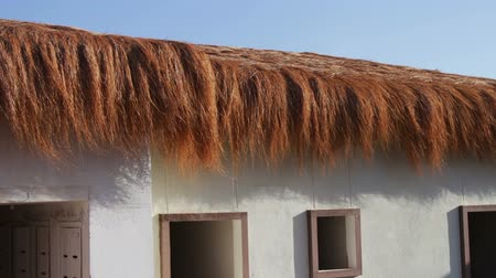 packing hay : stylish thatched roof