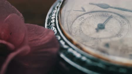 uhr : Close-up of pocket watch Next to a gently pink violet flower and passage of time Stock Footage