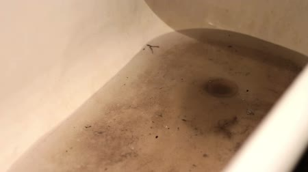 leftover : Dirty Water and drain Near the black plunger