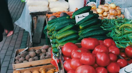 bakkal : Delicious fresh cucumbers tomatoes and other vegetables with price tags lie on market counter Stok Video