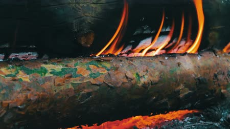 ardente : Close up view of a huge burning firewood or logs lie on the green and burn in the flames of fire in open air