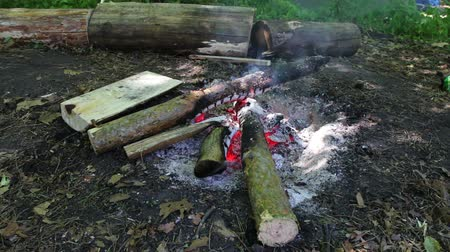 çatırtı : Large burning logs burn and smolder in fire. Bonfire outdoors on day