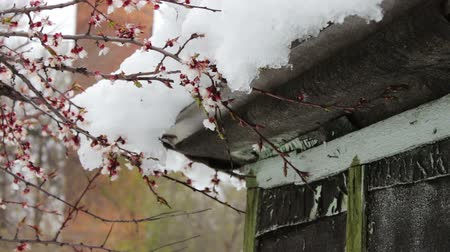 tin roofs : Big snow cap on the roof of the house on the corner of the house.Melting snow in the spring Stock Footage
