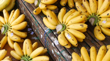 manga : Beautiful yellow bunches of small bananas with price tags on bamboo counter on the street market, Thailand