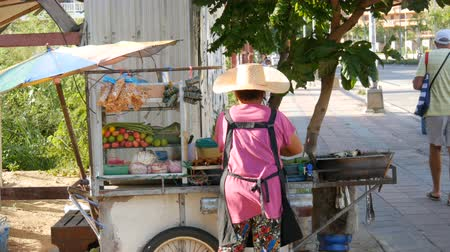 baharatlı alman sosisi : Thai woman sells Thai street food on a portable trolley. Asian exotic dishes