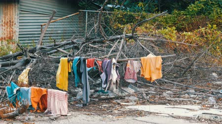 favelas : The poor dry things on the branches on trees. Poor homeless people dry their things on the streets of the city